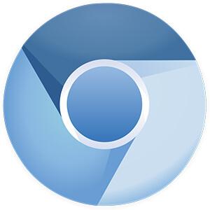Chromium логотип браузера (фото)