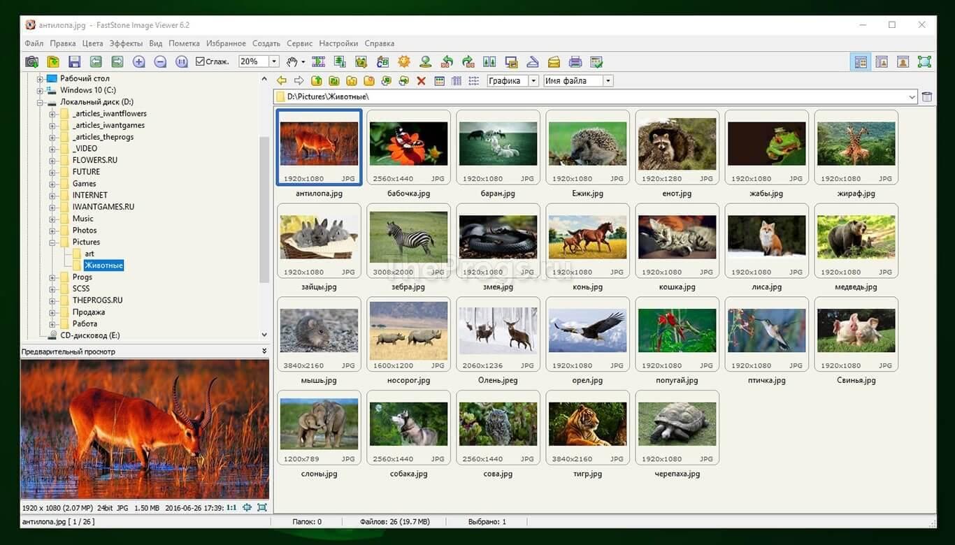 Faststone Image Viewer интерфейс программы менеджер фото