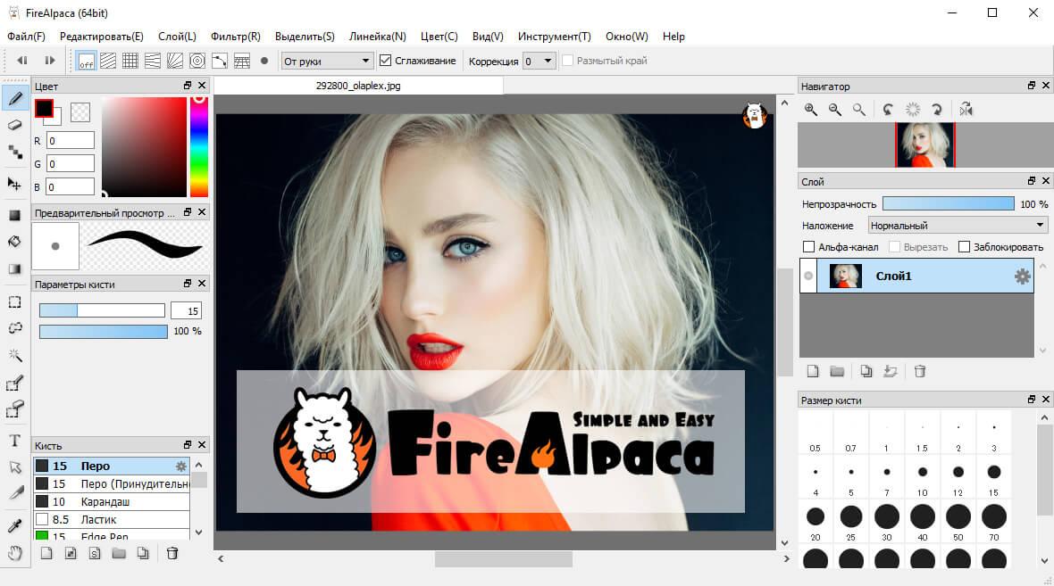 FireAlpaca скриншот (фото)