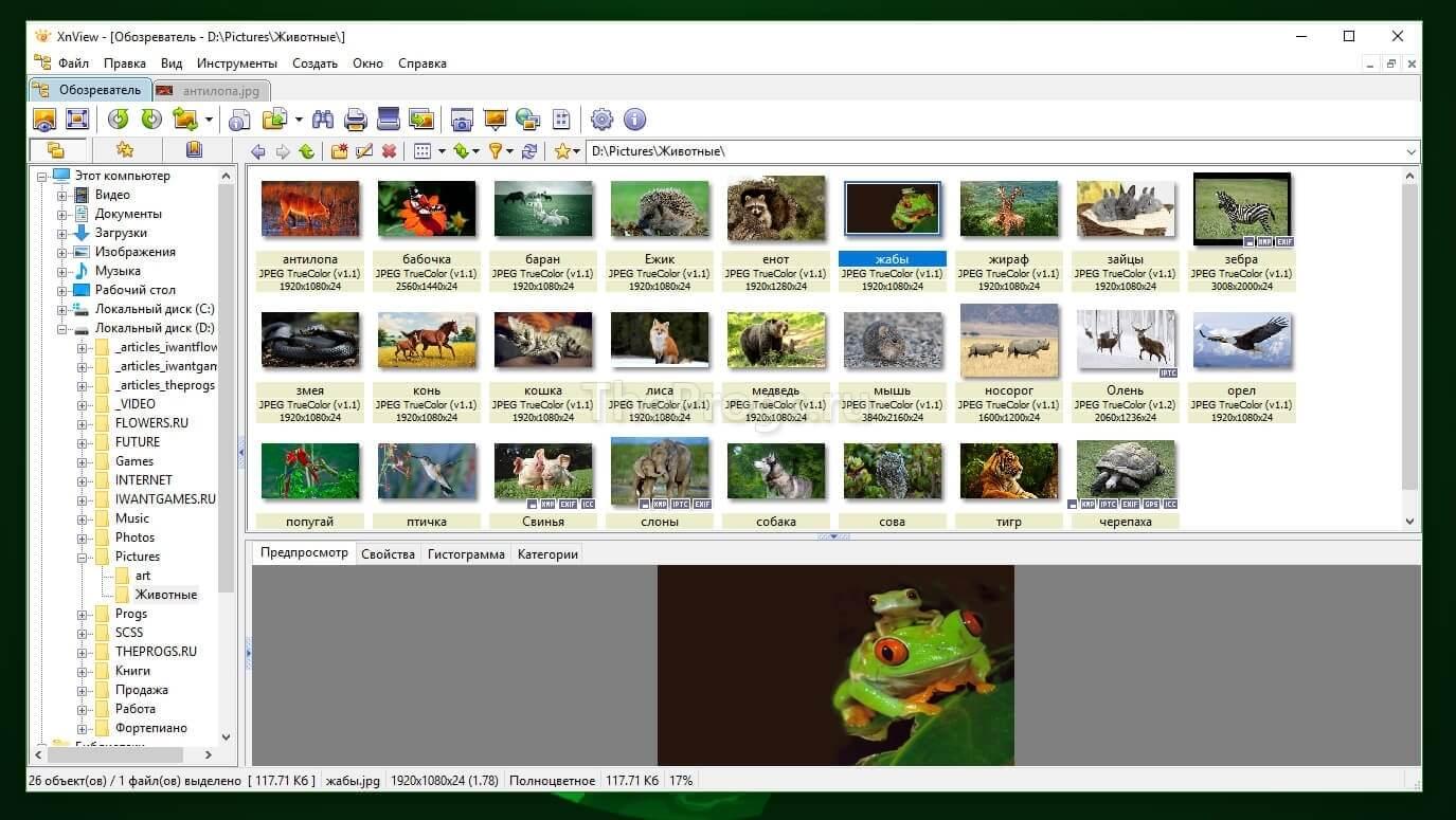 XnView скриншот (фото)
